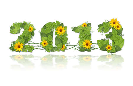 New year 2013. Date lined green leaves with drops of dew and flower.. Isolated on white background photo