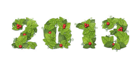 New year 2013. Date lined green leaves with red berry and drops of dew. Isolated on white background photo