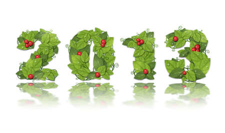 New year 2013. Date lined green leaves with red berry and drops of dew. On white background photo