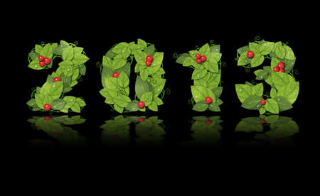 New year 2013. Date lined green leaves with red berry and drops of dew. Isolated on black background Stock Photo - 16081849
