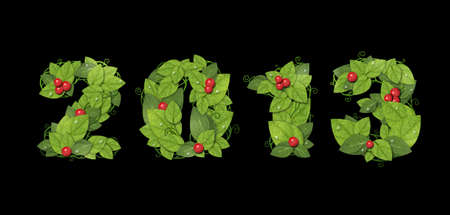 New year 2013. Date lined green leaves with red berry and drops of dew. Isolated on black background Stock Photo - 16081845
