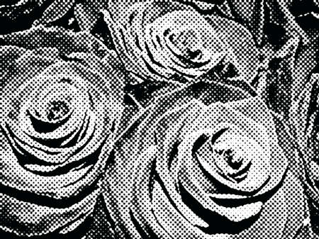 pastiche: Roses black and white, retro pastiche