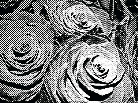 Roses black and white, retro pastiche