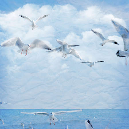 Vintage paper blue background with clouds and seagull. For design of photo album and photo book.