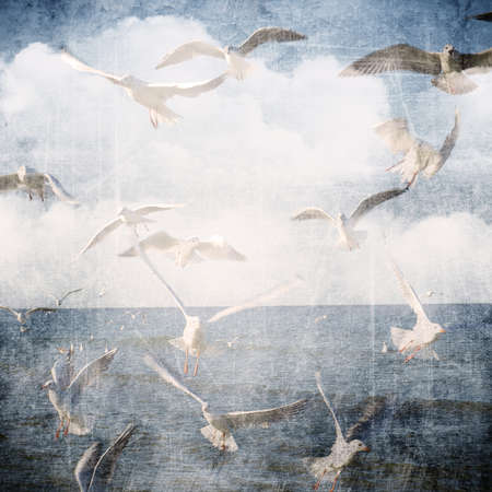 An abstract vintage texture background with clouds and seagull. Page to design photo book, album.