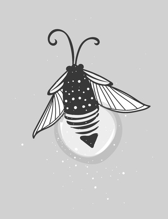 firebug: Hand-drawn cute cartoon firefly bug design. Vector illustration. Illustration