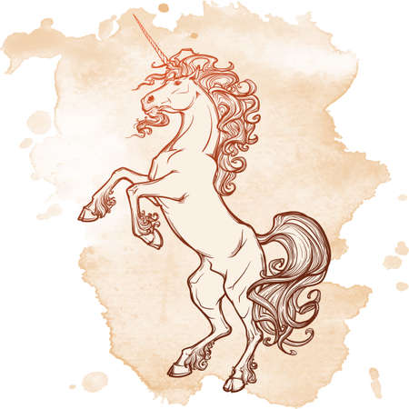 hind: Unicorn standing on its hind legs as a traditional heraldry emblem. Heraldry element. Sketch on a grunge spot. Vintage design. Illustration