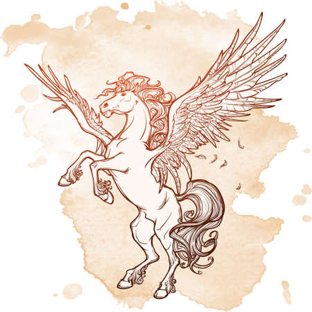 beast creature: Pegasus greek mythological creature. Legendary beast concept drawing. Heraldry figure. Vintage tattoo design. Sketch on a grunge background.  vector illustration. Illustration