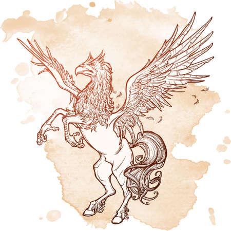beast creature: Hippogriff greek mythological creature.. Legendary beast concept drawing. Heraldry figure. Vintage  design. Sketch on a grunge background. EPS10  illustration.