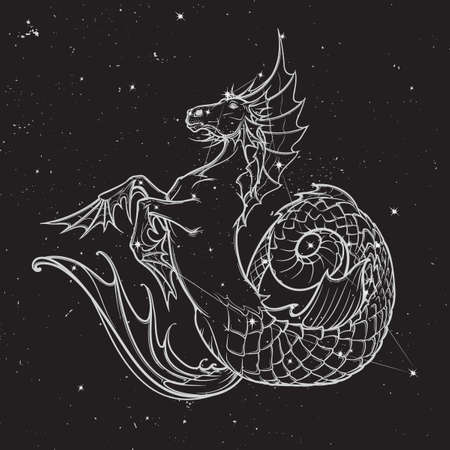 kelpie: Hippocampus greek mythological creature. Kelpie scottish fairy tale water horse. White sketch on nightsky background with stars.