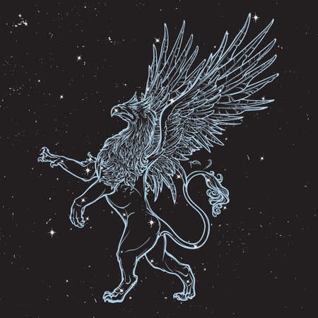 mythology: Griffin, griffon, or gryphon legendary creature from Greek mythology. Sketch on black nightsky beckground with stars.