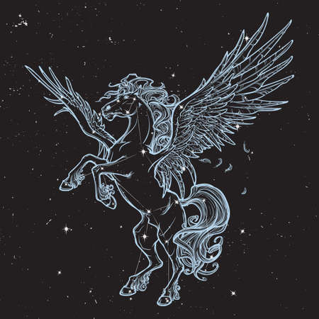winged lion: Pegasus criatura mitológica griega. El legendario dibujo concepto bestia. diseño del tatuaje de la vendimia. ilustración vectorial.