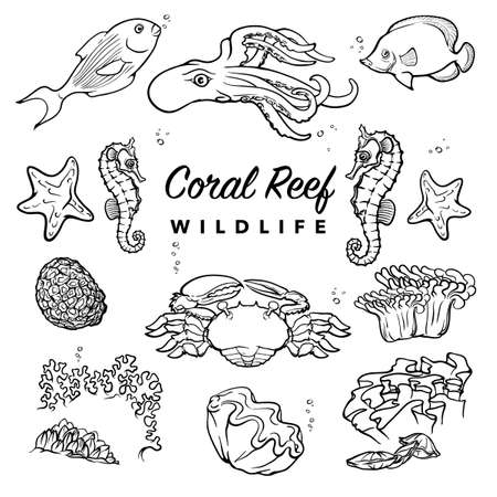Tropical coral reef inhabitants. Sea creatures drawings with white silhouettes isolated on white background. Ilustração