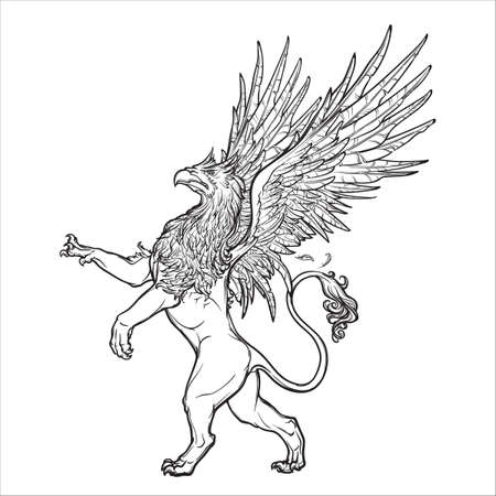 winged lion: Griffin, griffon, o el gryphon criatura legendaria de la mitología griega. Boceto en una beckground grunge. diseño de cosecha. ilustración vectorial EPS10. Vectores