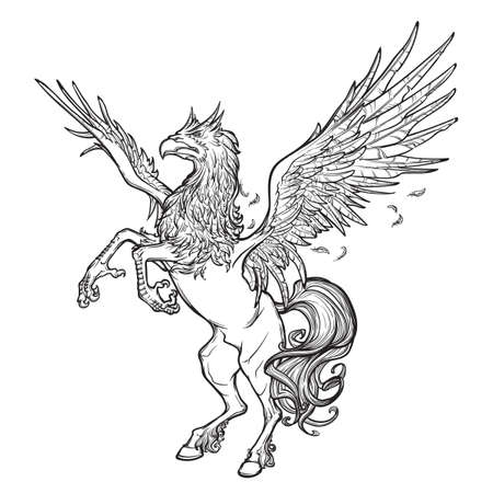 beast creature: Hippogriff greek mythological creature.. Legendary beast concept drawing. Heraldry figure. Vintage tattoo design. Sketch isolated on white background. EPS10 vector illustration.