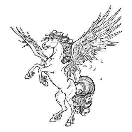 winged lion: Pegasus criatura mitológica griega. El legendario dibujo concepto bestia. la figura heráldica. diseño del tatuaje de la vendimia. Boceto aislado en un fondo blanco. ilustración vectorial EPS10. Vectores