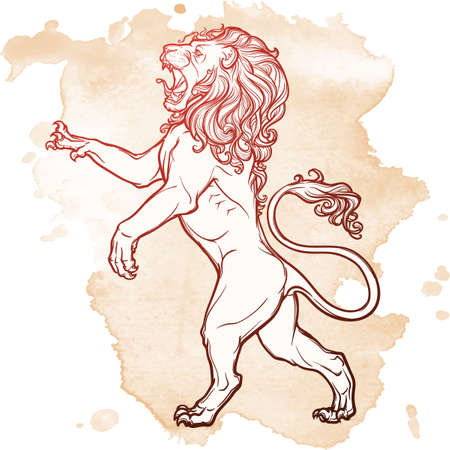 Lion stanging on its hind legs and roaring. Heraldic supporter. Sketch on grunge background. EPS10 vector illustration.