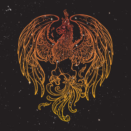 myths: Phoenix or Phenix magic creature from ancient greek myths. Boho style look. Black nightsky background with stars. Zodiac sign. Astrology design. EPS10 vector illustration