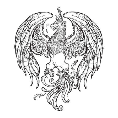 ave fenix: Phoenix o Phenix criatura mágica de los antiguos mitos griegos. partidario heráldico. Boceto aislado en el fondo blanco. ilustración vectorial EPS10.