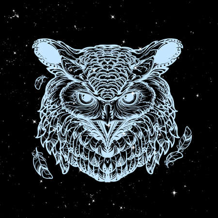 Beautiful detailed illustration of an owl head in frontal view. Coloring book for adults illustration. Sybol of wisdom and knowledge. Nightsky background with stars.
