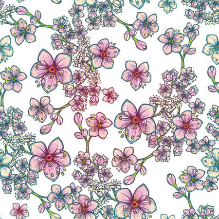 temperate: Temperate flowers seamless pattern. Meadowsweet flowers. Tender delicate colors. Fresh spring floral design for textile print. White background.