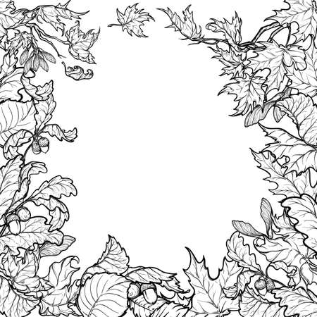 elaborate: Fall Festival frame or border. Greeting card, or poster template. Sketch style autumn leaves isolated on white background. Elaborate hand drawing. Coloring book.
