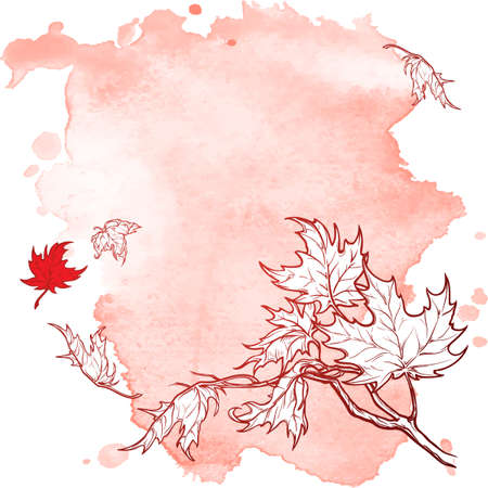 Wind stripping leaves off the Maple branch. Desecrated Red grunge spot background. Autumn mood. Hand drawn sketch. Illustration