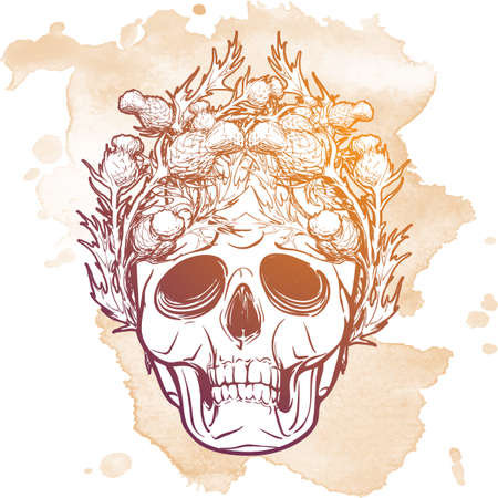 ironic: Hipster style human skull with a Skottish Thistle wreath. Hand drawn sketch on a watercolor spot. Vintage design. Halloween concept art. EPS10 vector illustration.