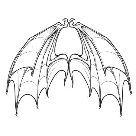 Bat membranout wings sketch. Halloween concept art. Isolated on white background. EPS10 vector illustration.