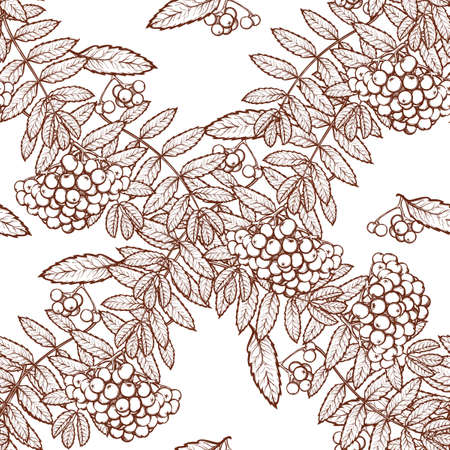 rowanberry: Autumn rowanberry leaves and berries. Detailed intricate hand drawing. Chaotic distribution of elements. Seamless pattern. EPS10 vector illustration.