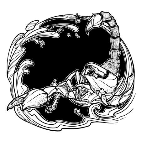 arthropod: Alchemy element of water. Zodiac sign Scorpio. Detailed realistic scorpio hand drawing. Sketch isolated on white background. Concept art for tattoo design, horoscope, coloring book for adults page.