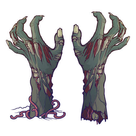 Pair of zombie hands rising from the ground and torn apart. lifelike depiction of the rotting flash with ragged skin, protruding bones and cracked nails. Conceptual art. EPS10 vector illustration