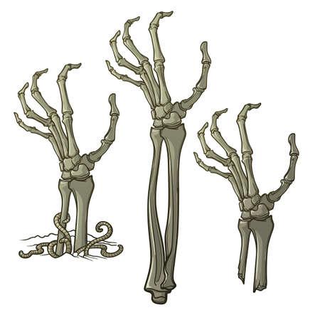 ゾンビの手を離れて引き裂かれ地面からの上昇のペア。不規則な肌、突き出た骨ひびの入った爪と腐敗のフラッシュのリアルな描写。コンセプチュ