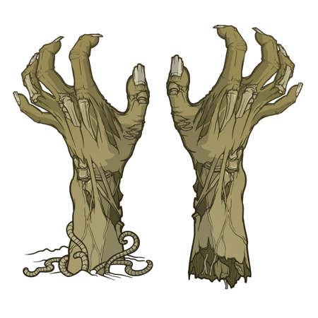 Pair of zombie hands rising from the ground.