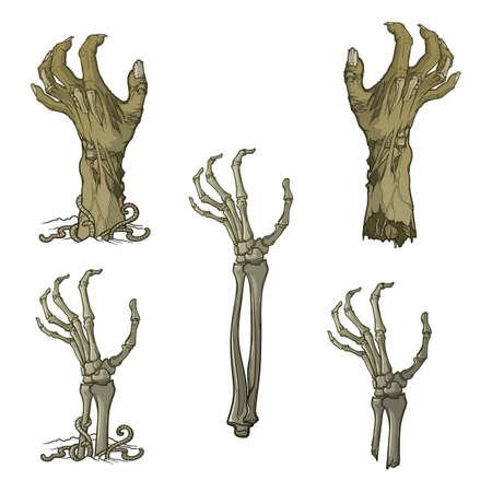 Satz von lebensechten abgebildeten verrottenden Zombie Händen und Skelett Händen unter dem Boden aufsteigen und auseinander gerissen. Einfarbige Zeichnung getrennt auf weißem Hintergrund.