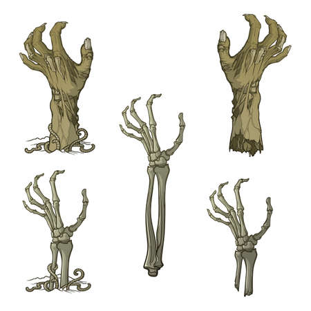 Set of lifelike depicted rotting zombie hands and skeleton hands rising from under the ground and torn apart. Monochrome drawing isolated on white background.