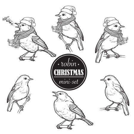 Christmas Robin. Set of 6 hand drawn sketch style pictures of Robin in different angles with or without hat and scarf. Linear drawing isolated of white background. EPS 10 Vector illustration