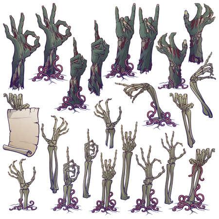Lenguaje corporal zombie. Conjunto de manos de zombies podridas y reales y manos esqueléticas que se elevan desde debajo del suelo y se rompen. dibujo lineal aislado sobre fondo blanco. Ilustración vectorial EPS10 Ilustración de vector