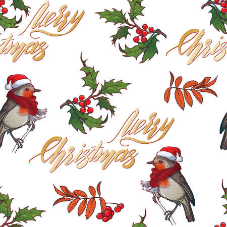 Christmas seamless pattern. Robin bird in a red christmas hat and skarf. Holly leaves and berries. Handwritten sign. Vector drawing isolated on white background. EPS10 vector illustration