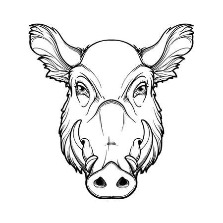 Fanged Wildschweinkopf. Maskottchen des neuen Jahres 2019 nach dem chinesischen Tierkreiskalender. Lineare schwarze Zeichnung auf weißem Hintergrund. EPS10-Vektorillustration Vektorgrafik