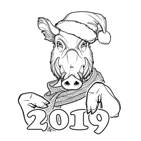 Cute pig in a Santa hat and scarf holding 2019 sign. Mascot of the New Year 2019 according to Chinese zodiac calendar. Linear black drawing isolated on white background. EPS10 vector illustration Illustration