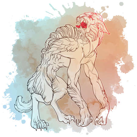 Werewolf. A legendary monster from european folklore tales. Line drawing on a grunge watercolor textured spot. Coloring book or tattoo design. EPS10 vector illustration. Illustration
