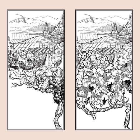 Vinyard in Tirol Alps, Austria. Set of two vertical banners. Vintage design. Linear sketch isolated on white background. EPS10 vector illustration Illustration