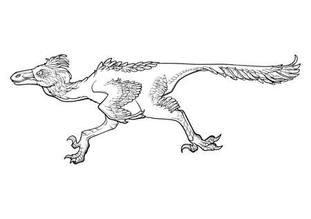 Running velociraptor. Black linear hand drawing isolated on a white background. Coloring Book page.  Vector illustration Illustration