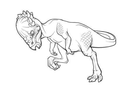 Pachycephalosaurus head-butting his rival. Black linear hand drawing isolated on a white background. Coloring Book page.