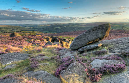Sunset at Moorland, Heather in bloom over the rugged moor in Derbyshire, Peak District photo