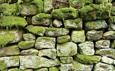 Old stone wall covered with moss, background, texture photo