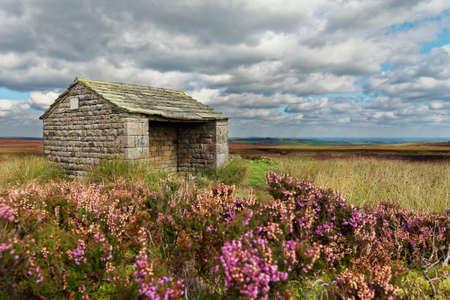 moorland: Stone shelter overlooking the moorland