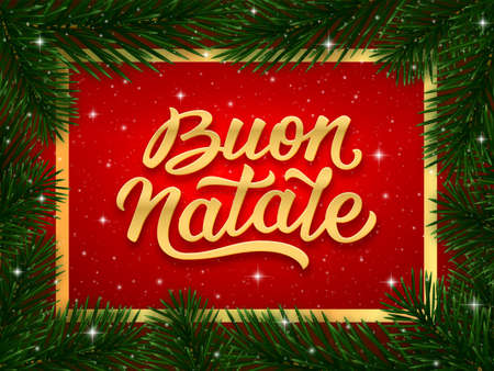 Buon Natale italian Merry Christmas calligraphy text on blue background with border of fir tree branches. Vector greeting card design
