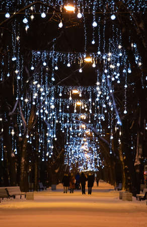New year time in Saint-Petersburg, Russia. Christmas lights and decorations in park alley at night